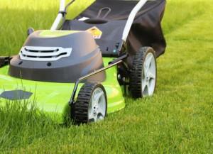 Gartenhilfe, Ihre HOMEHELP-Gartenhilfe übernimmt gerne die Rasenmäherei für Sie.