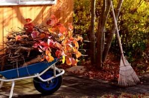 Gartenhilfe, im Herbst  gibt es viel im Garten zu tun. Ihre   HOMEHELP-Gartenhilfe übernimmt das gerne für Sie